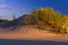 Sunset on sand dunes Royalty Free Stock Photography