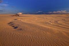 Sunset on sand dunes Stock Photo