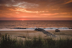 Sunset on sandy beach Stock Photography