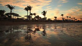 Sunset on the sandy beach. Red Sea, stock video