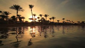 Sunset on the sandy beach. Red Sea. Egypt stock video