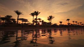 Sunset on the sandy beach. Red Sea. Egypt stock video footage