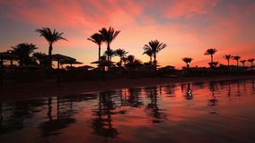 Sunset on the sandy beach. Red Sea stock video footage