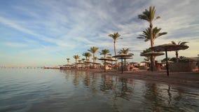 Sunset on the sandy beach. Red Sea,. Egypt stock video