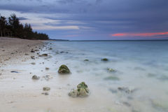 Sunset on the sandy beach Stock Photography