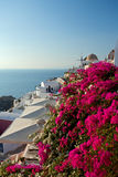 Sunset santorini island. Stock Photography
