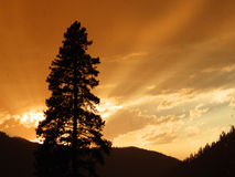 Sunset Sapphire Mountains Montana Stock Image