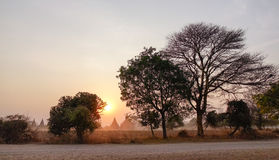 Sunset scene in Bagan, Myanmar Royalty Free Stock Photos