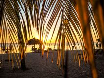 Sunset scene framed by palm leaves. Warm sunset scene framed by palm leaves near Trinidad, Cuba Royalty Free Stock Photos