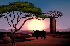 A sunset scenery with a four-legged animal. Illustration of a sunset scenery with a four-legged animal Stock Photography