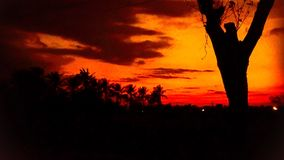 Sunset scenery. Sunset silhouette nature redsky scenery Royalty Free Stock Images