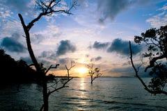 Sunset blue sky Stock Photos