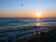 Sunset at sea coast Royalty Free Stock Images