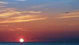 Sunset, Sea, Evening, North Sea Royalty Free Stock Photo