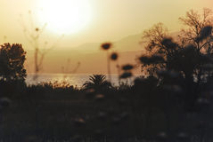 Sunset Sea of Galilee Stock Photography