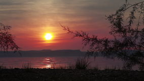 Sunset at sea of galilee with tree. Video of sunset at sea of galilee with tree stock video