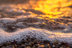 Sunset by the sea golden glow. On stones Royalty Free Stock Image