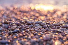 Sunset by the sea golden glow. On stones Stock Images