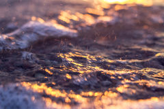 Sunset by the sea golden glow. On water Stock Photography