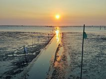 Sunset. The sea at low tide and sunset Stock Image