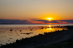 Sunset by the sea. Sunset over the sea and swimming Stock Photography