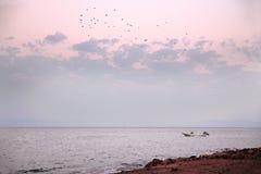 Sunset at sea. Pink sunset at the seashore Royalty Free Stock Photo