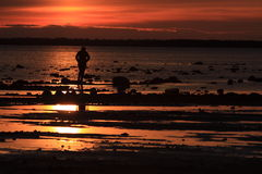 Sunset on the sea shore Stock Photography