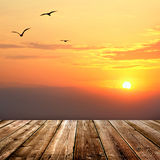 Sunset  with seagulls and wood planks floor background Stock Photography