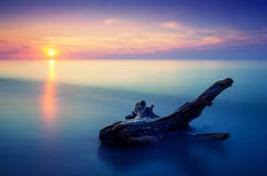 Sunset seascape. Long exposure water with log royalty free stock images