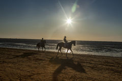 Sunset on the seashore with silhouettes of a riders on horses. Stock Photos