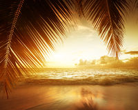 Sunset on Seychelles beach Royalty Free Stock Images