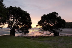 Sunset on Shelly beach Stock Photos