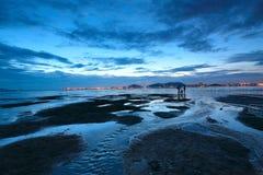 Sunset shingle coast Royalty Free Stock Photography