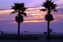 Sunset Shipping. Brilliant Hunting Beach sunset framed by palm trees. Frieghter in the image is one of many backed up from Long Beach harbor waiting inspection stock photos