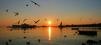 Sunset In Shore Royalty Free Stock Image