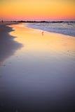 Sunset Shore Long Island Royalty Free Stock Image