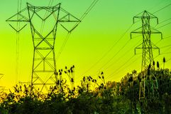 Powerlines at sunset. A sunset shot of a field of powerlines Stock Image