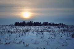 Sunset in Siberia in winter Royalty Free Stock Photos