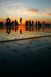 Sunset silhouette. Silhouettes in the sunset near the sea royalty free stock photo