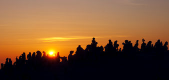 Sunset and silhouette royalty free stock image