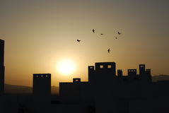 Sunset. With silhouette of chimneys and swallows in Spain Royalty Free Stock Photography