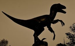 Sunset silhouette of a dinosaur body. Sunset silhouette of the body of a huge dinosaur royalty free stock photo
