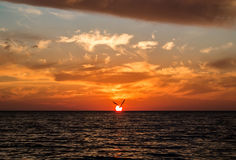 A sunset and a silhouette of flying seagull. A silhouette of flying seagull, a setting sun and colored orange clouds at the beach of Black sea, Sochi, Russia Royalty Free Stock Images