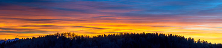 Sunset  and silhouette of forest Royalty Free Stock Image