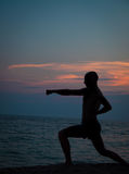 Sunset silhouette of  man practicing martial arts Royalty Free Stock Photo