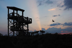 Sunset and Silhouette of the Observation Tower Royalty Free Stock Photo