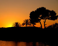 Sunset with Silhouette palm trees and sea. Sun setting behind hills in front of the sea with silhouette trees Royalty Free Stock Photo