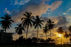 Sunset silhouette of palm trees in tropics. Sunset with silhouette of palm trees in tropics scenic sea beach resort in tropical asian country, Thailand Royalty Free Stock Image