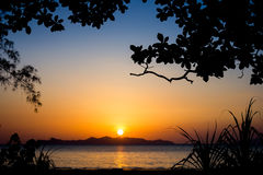 Sunset silhouette3. Silhouette tree and sunset on the beach Stock Photos