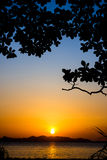 Sunset silhouette2. Silhouette tree and sunset on the beach Royalty Free Stock Photos